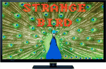 TV Peacock